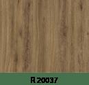 r20037