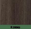 r20065