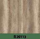 r20113