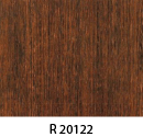 r20122