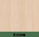 r22248