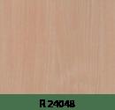 r24048
