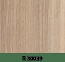r30039