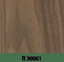 r30061
