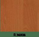r36008