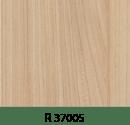 r37005