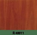 r40011