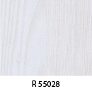 r55028