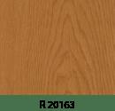 r20163