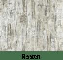 r55031